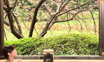 温泉家・北出恭子おすすめ!桜と一緒に楽しもう!九州のお花見温泉
