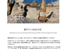 5/22(金)20時~第1回【温ライン ROSÉ ロゼ】オンライン交流会開催